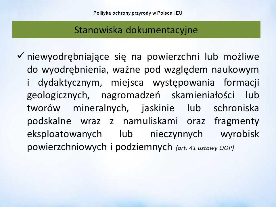 Polityka ochrony przyrody w Polsce i EU Stanowiska dokumentacyjne niewyodrębniające się na powierzchni lub możliwe do wyodrębnienia, ważne pod względe