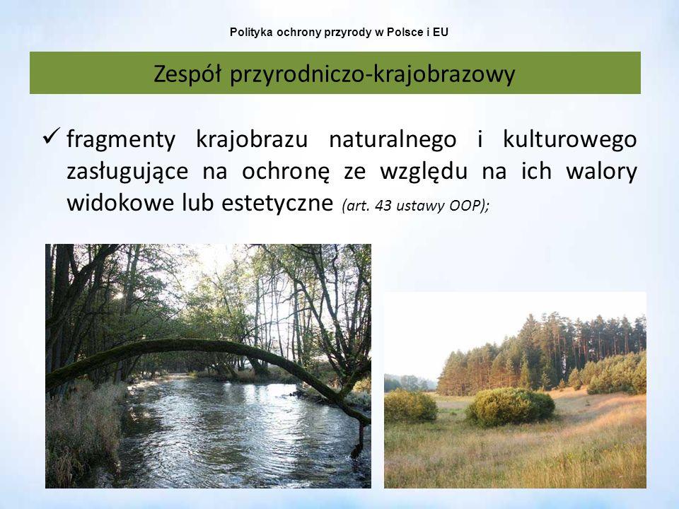 Polityka ochrony przyrody w Polsce i EU Zespół przyrodniczo-krajobrazowy fragmenty krajobrazu naturalnego i kulturowego zasługujące na ochronę ze wzgl