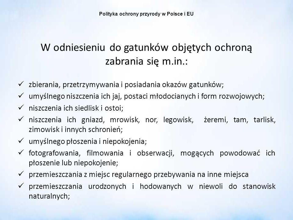 Polityka ochrony przyrody w Polsce i EU W odniesieniu do gatunków objętych ochroną zabrania się m.in.: zbierania, przetrzymywania i posiadania okazów