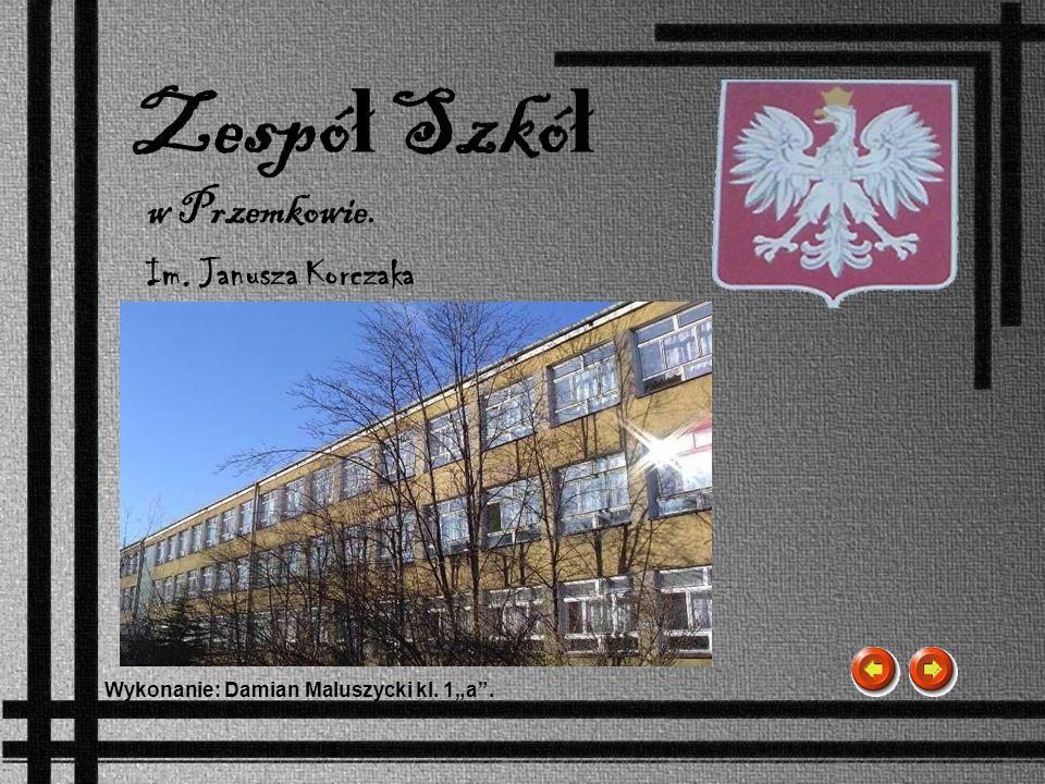 Zespó ł Szkó ł Im. Janusza Korczaka Wykonanie: Damian Maluszycki kl. 1a. w Przemkowie.