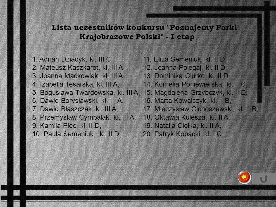 1. Adrian Dziadyk, kl. III C, 2. Mateusz Kaszkarot, kl. III A, 3. Joanna Maćkowiak, kl. III A, 4. Izabella Tesarska, kl. III A, 5. Bogusława Twardowsk