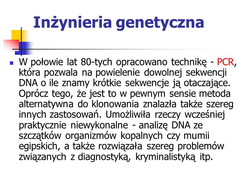 Inżynieria genetyczna W połowie lat 80-tych opracowano technikę - PCR, która pozwala na powielenie dowolnej sekwencji DNA o ile znamy krótkie sekwencj