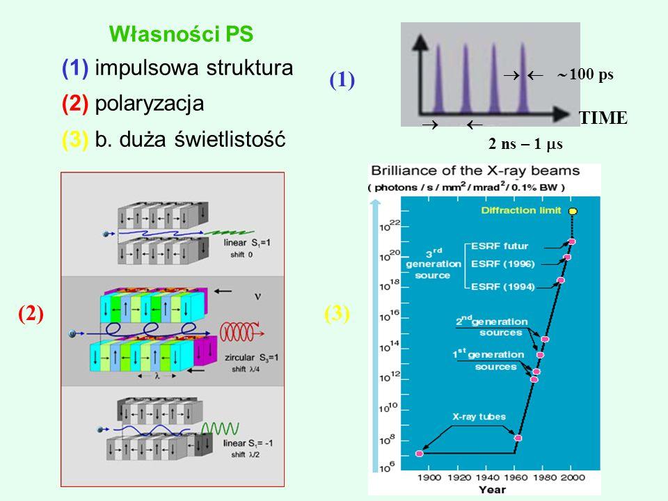 (1) impulsowa struktura (2) polaryzacja (3) b.