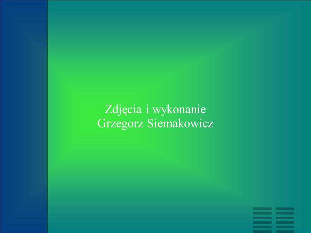 Zdjęcia i wykonanie Grzegorz Siemakowicz