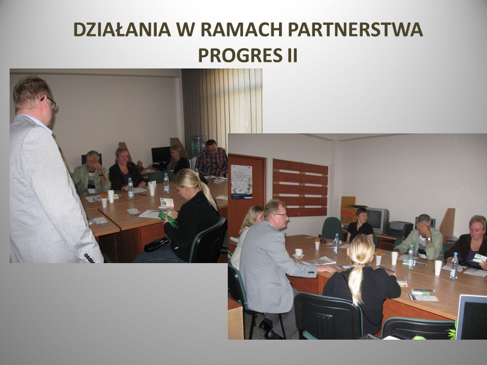 DZIAŁANIA W RAMACH PARTNERSTWA PROGRES II