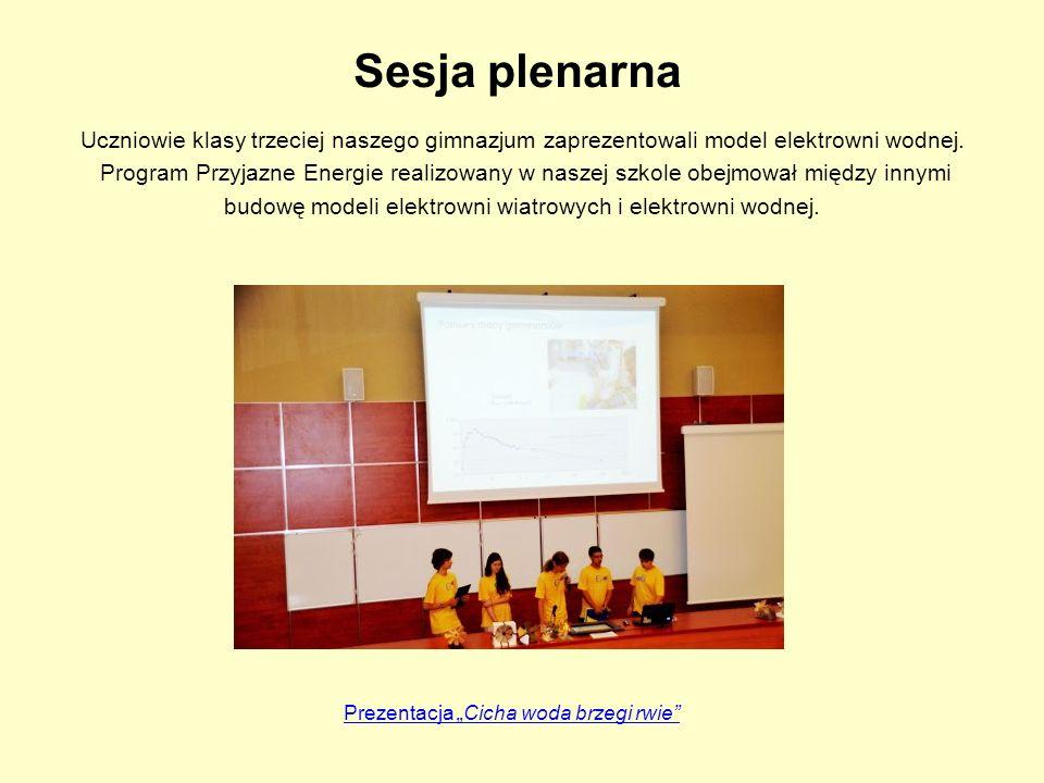 Sesja plenarna Uczniowie klasy trzeciej naszego gimnazjum zaprezentowali model elektrowni wodnej. Program Przyjazne Energie realizowany w naszej szkol