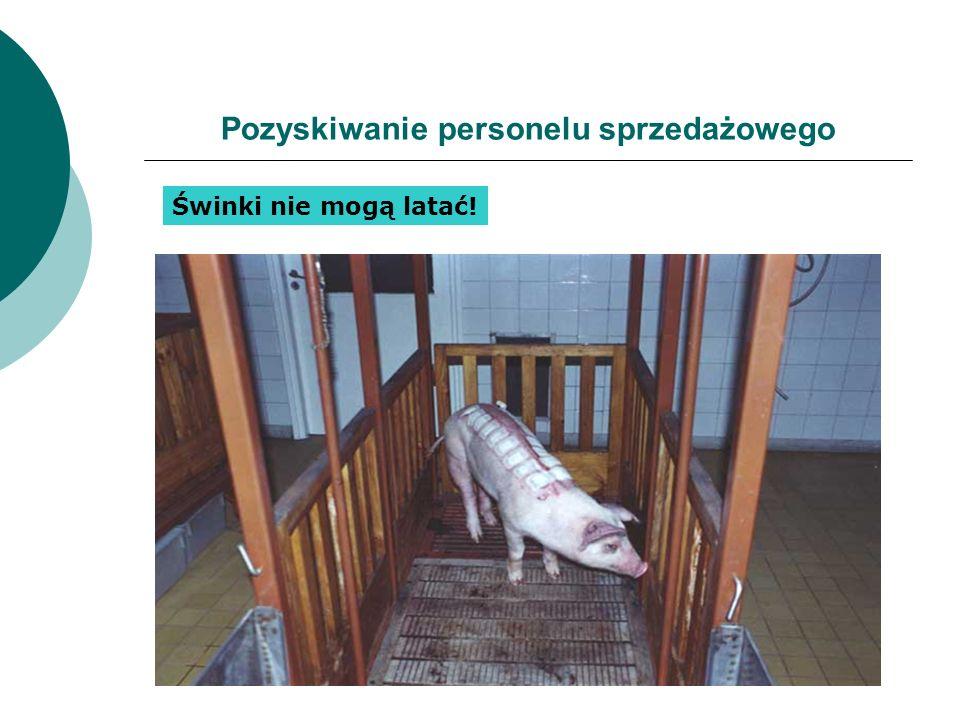 Pozyskiwanie personelu sprzedażowego Świnki nie mogą latać!