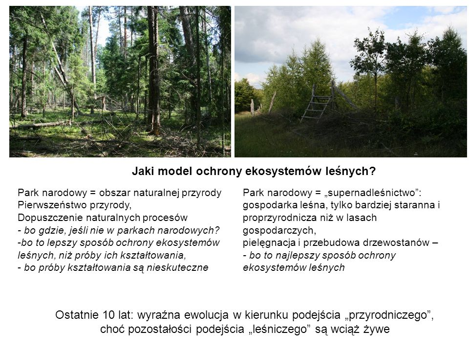 Jaki model ochrony ekosystemów leśnych? Park narodowy = obszar naturalnej przyrody Pierwszeństwo przyrody, Dopuszczenie naturalnych procesów - bo gdzi