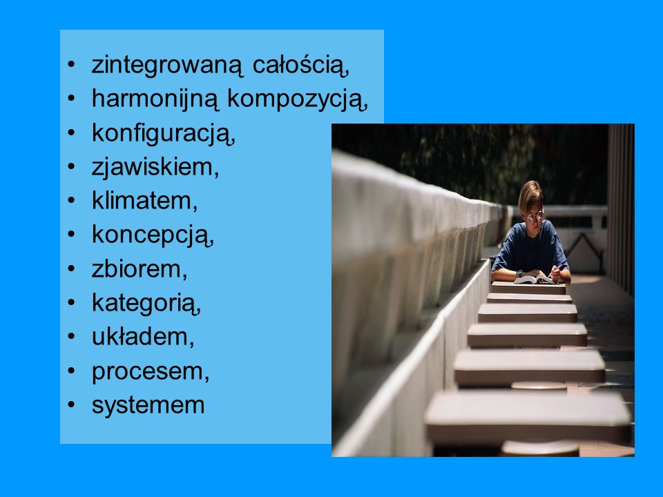 zintegrowaną całością, harmonijną kompozycją, konfiguracją, zjawiskiem, klimatem, koncepcją, zbiorem, kategorią, układem, procesem, systemem
