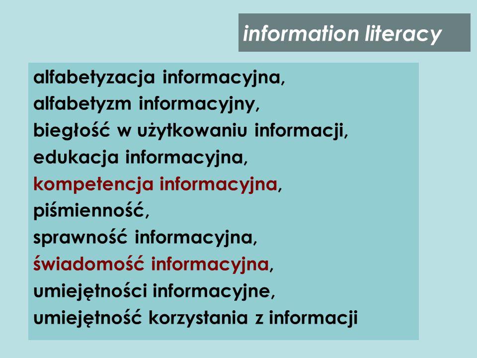 Świadomość informacyjna (orientacja jednostki lub grupy w zakresie funkcjonowania w świecie informacji połączona z ogólną wiedzą na ten temat) System wartości (wartości, normy, idee, przekonania uzasadniające potrzebę information literacy) Pozytywne postawy wobec informacji (wiedza dogłębna i emocje) Zachowania informacyjne (charakteryzujące dojrzałych informacyjnie użytkowników) Obszar kultury informacyjnej