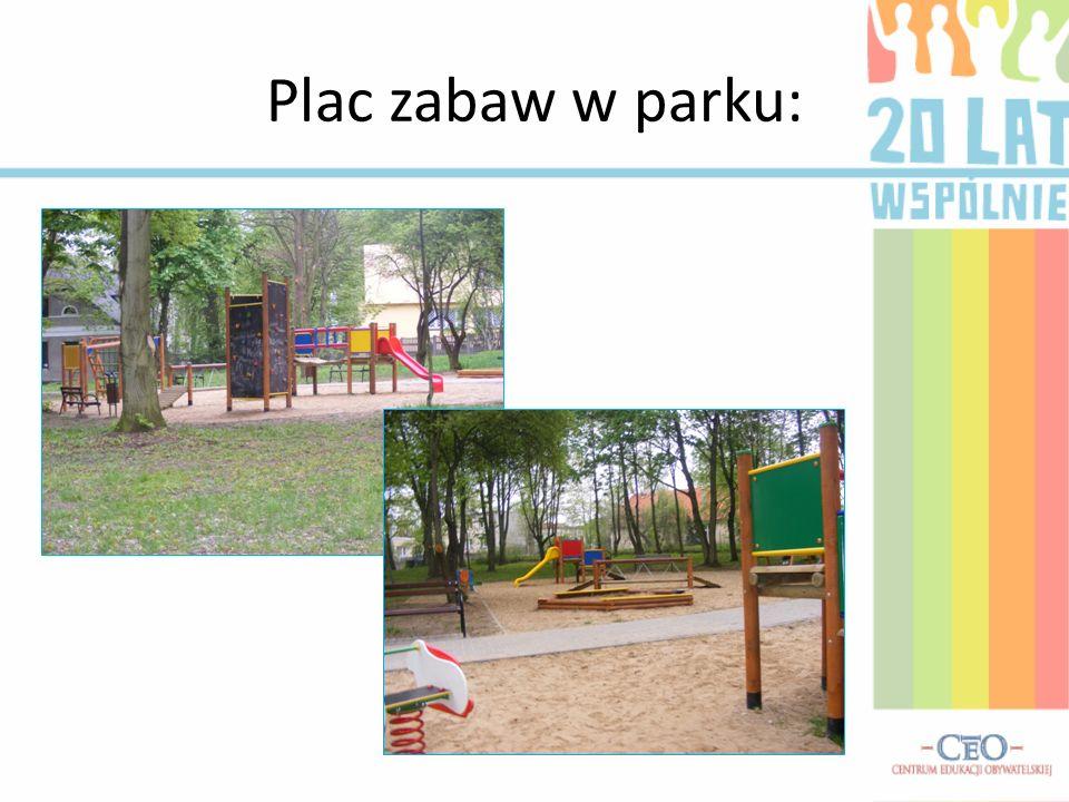Plac zabaw w parku: