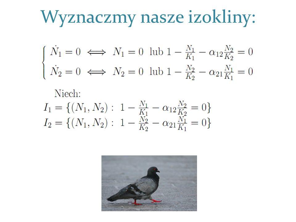 Interpretacja przypadku vs. Strategia gołębia