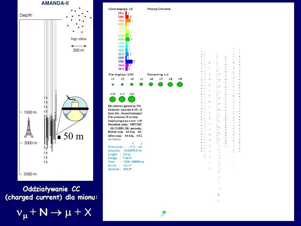 + N + X + N + X Oddziaływanie CC (charged current) dla mionu: 50 m