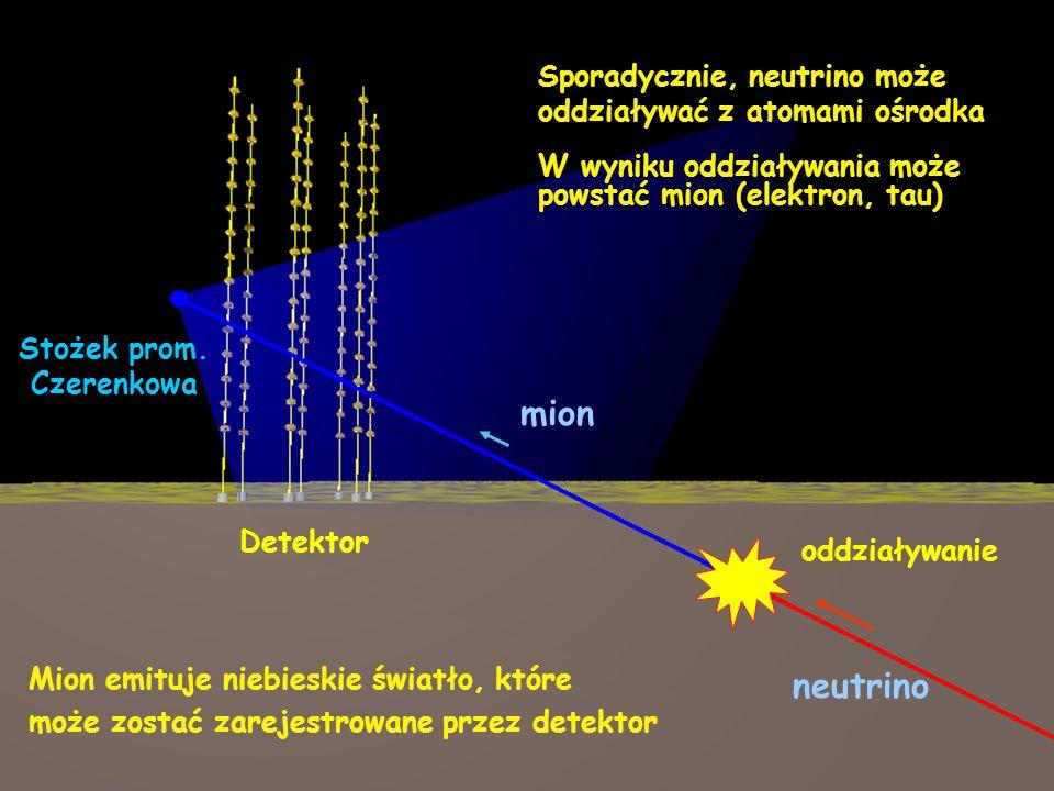 neutrino mion Stożek prom. Czerenkowa Detektor oddziaływanie Sporadycznie, neutrino może oddziaływać z atomami ośrodka Mion emituje niebieskie światło