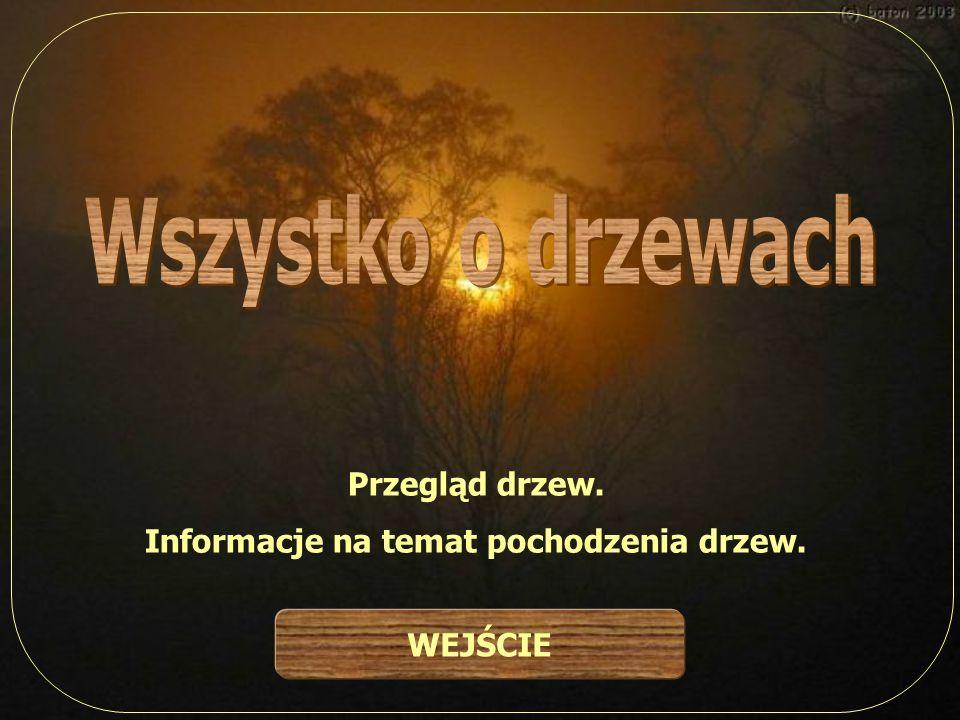 Przegląd drzew. Informacje na temat pochodzenia drzew. WEJŚCIE