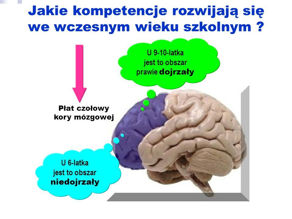 Jakie kompetencje rozwijają się we wczesnym wieku szkolnym ? Płat czołowy kory mózgowej U 6-latka jest to obszar niedojrzały U 9-10-latka jest to obsz