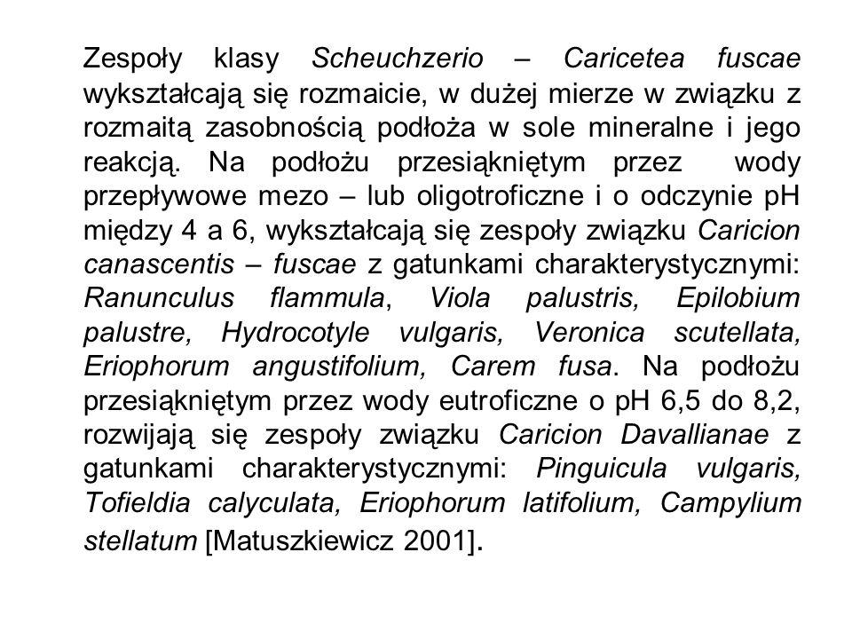 Zespoły klasy Scheuchzerio – Caricetea fuscae wykształcają się rozmaicie, w dużej mierze w związku z rozmaitą zasobnością podłoża w sole mineralne i j