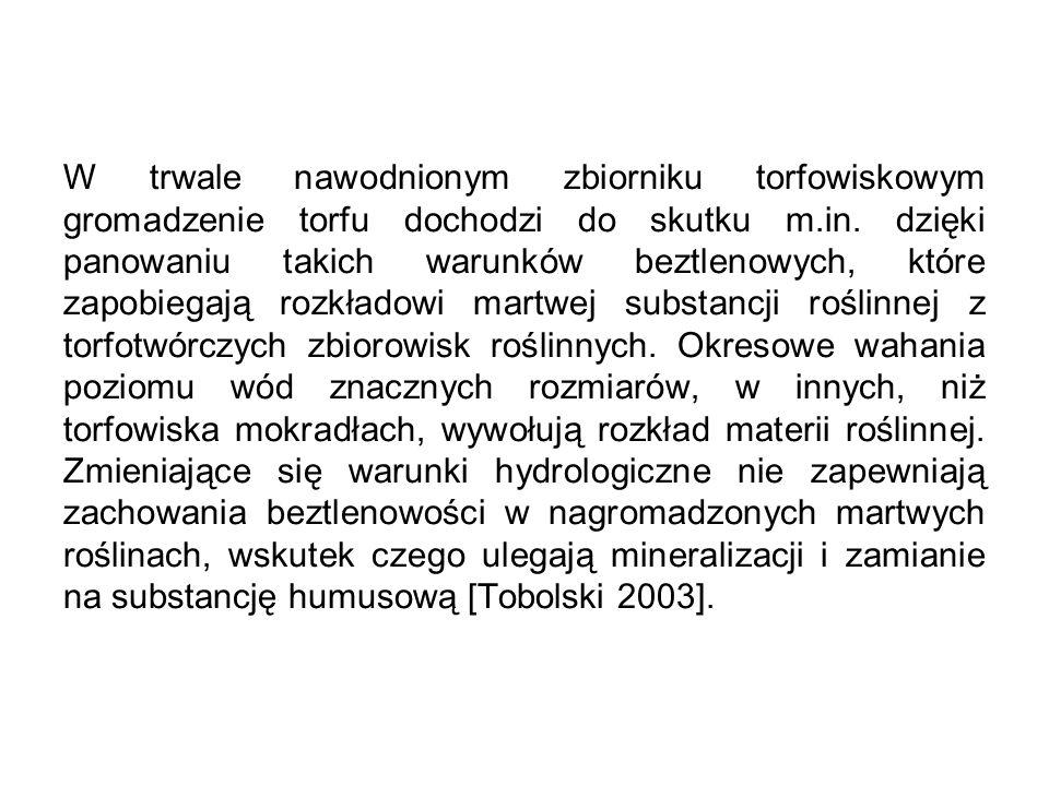 Jaka jest sytuacja w Polsce: Wśród europejskich torfowisk Polska zajmuje ósme miejsce.