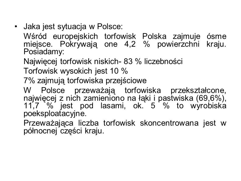 Jaka jest sytuacja w Polsce: Wśród europejskich torfowisk Polska zajmuje ósme miejsce. Pokrywają one 4,2 % powierzchni kraju. Posiadamy: Najwięcej tor