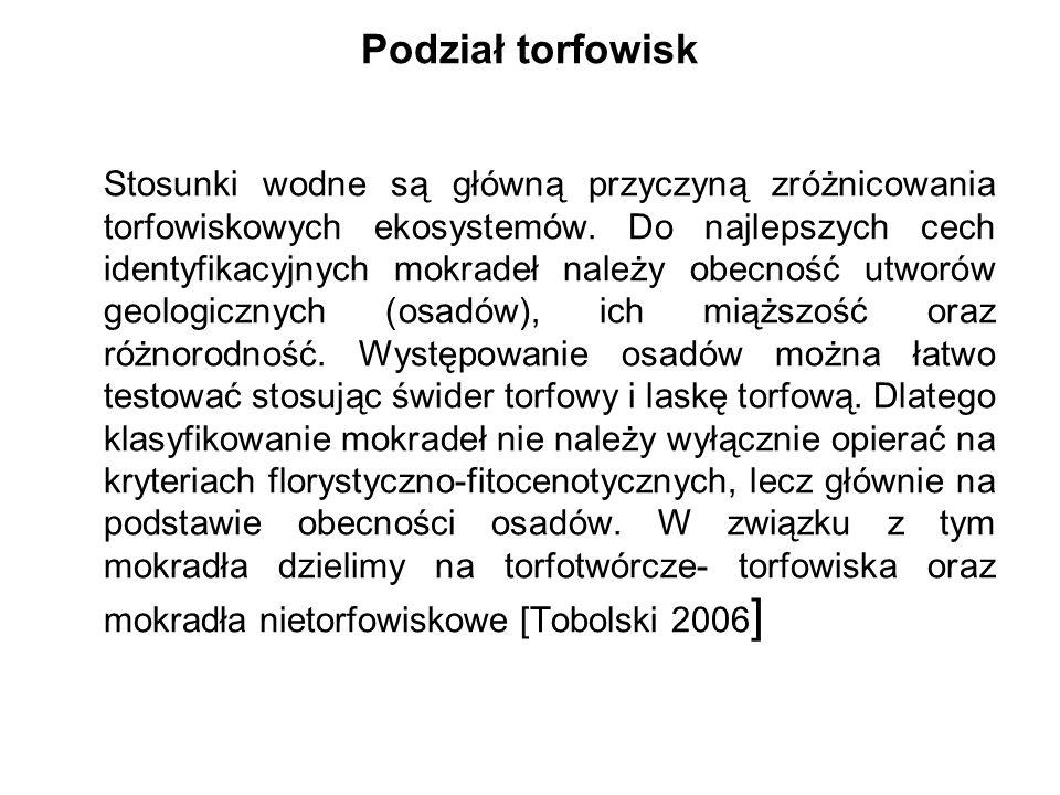 Carex elata (Turzyca sztywna) Carex paniculata (Turzyca prosowa)
