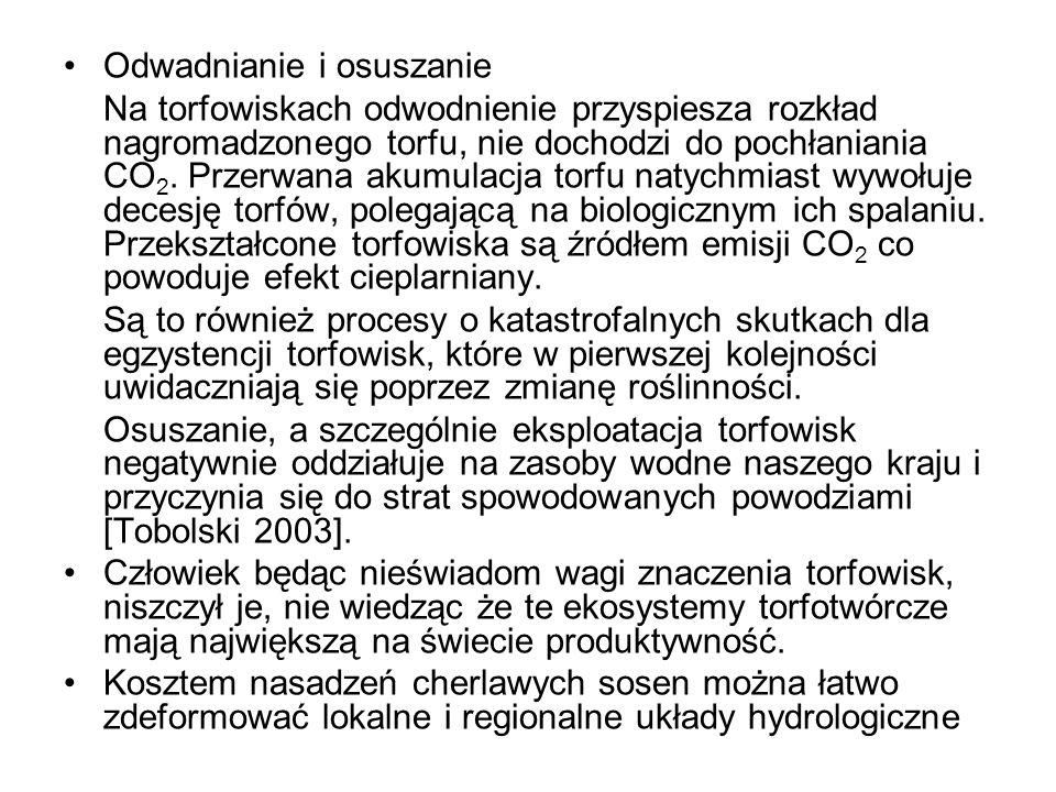 Odwadnianie i osuszanie Na torfowiskach odwodnienie przyspiesza rozkład nagromadzonego torfu, nie dochodzi do pochłaniania CO 2. Przerwana akumulacja