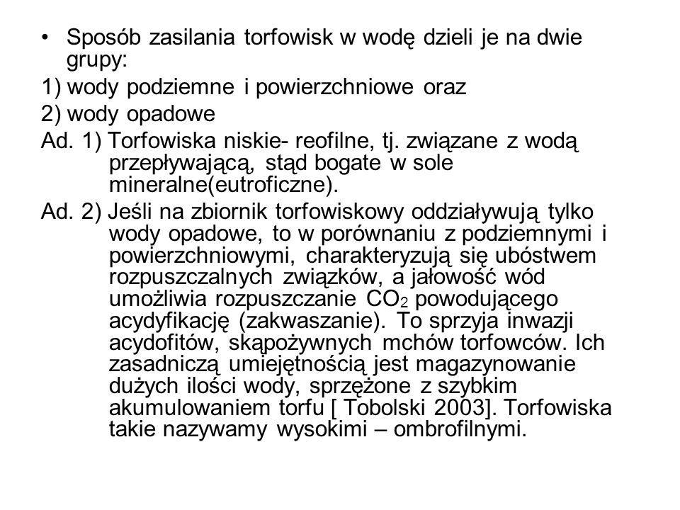 Sphagnum fuscum (Torfowiec brunatny) Sphagnum rubellum (Torfowiec czerwonawy)