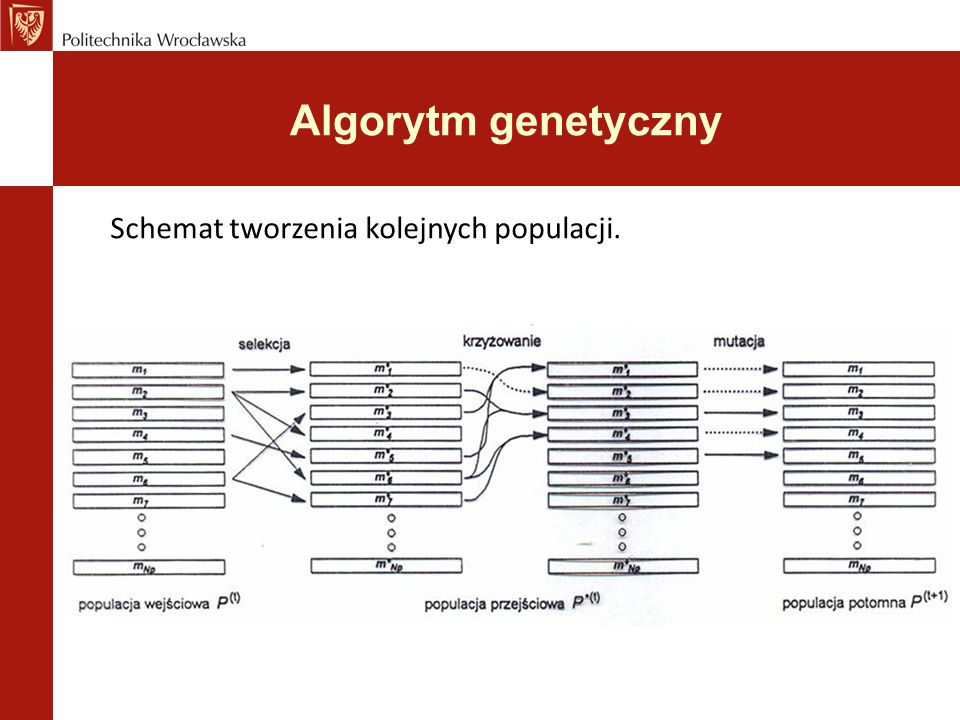 Algorytm genetyczny Schemat tworzenia kolejnych populacji.