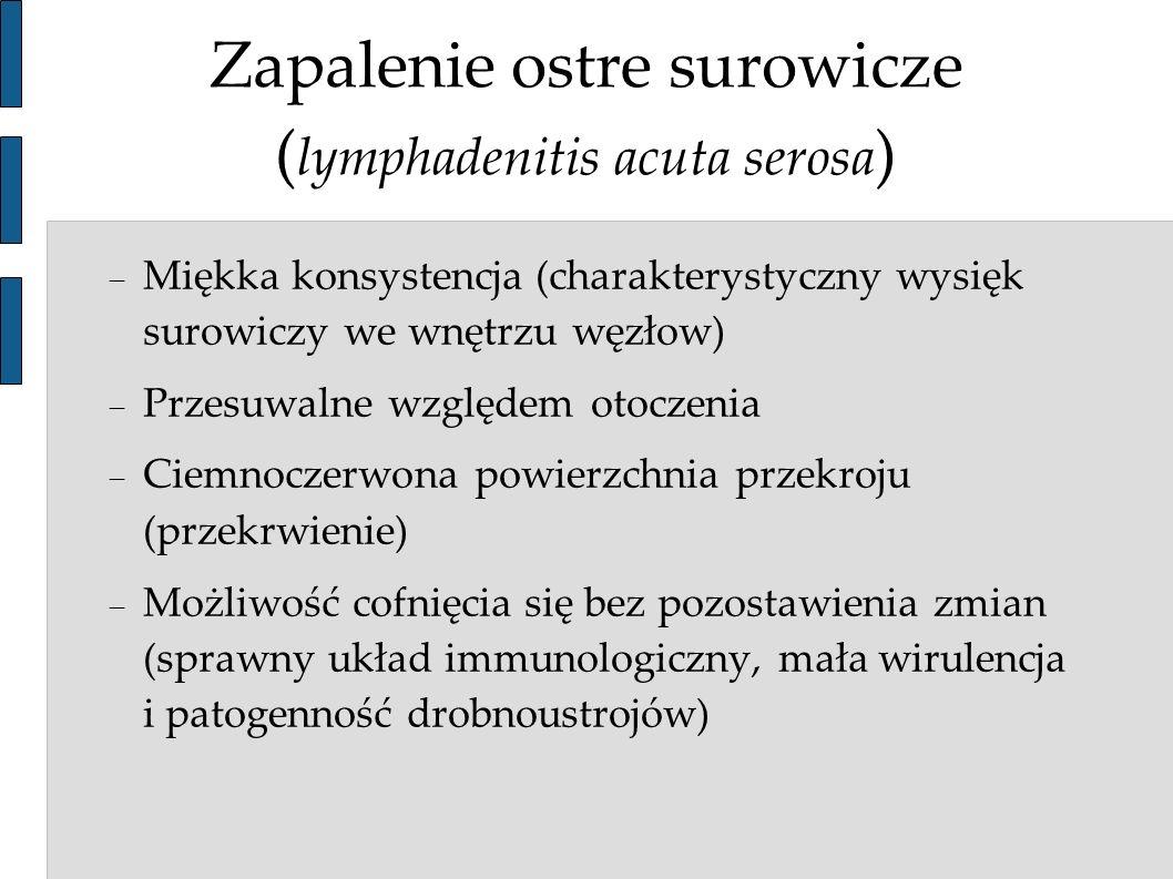 Zapalenie ostre surowicze ( lymphadenitis acuta serosa ) Miękka konsystencja (charakterystyczny wysięk surowiczy we wnętrzu węzłow) Przesuwalne względ