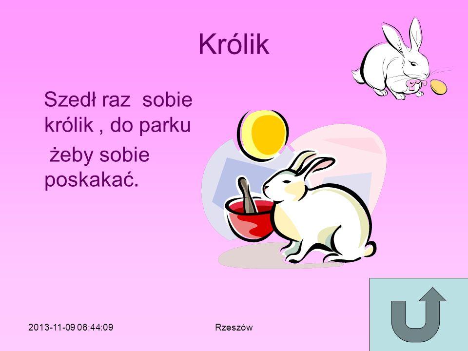Królik Szedł raz sobie królik, do parku żeby sobie poskakać. 2013-11-09 06:46:11Rzeszów