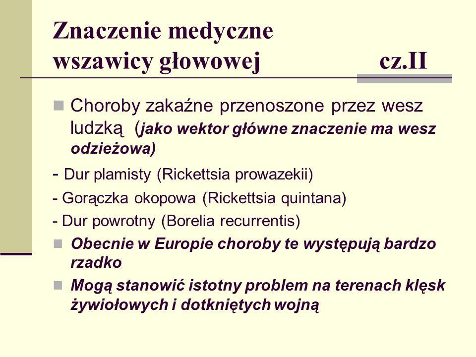 Znaczenie medyczne wszawicy głowowej cz.II Choroby zakaźne przenoszone przez wesz ludzką ( jako wektor główne znaczenie ma wesz odzieżowa) - Dur plami