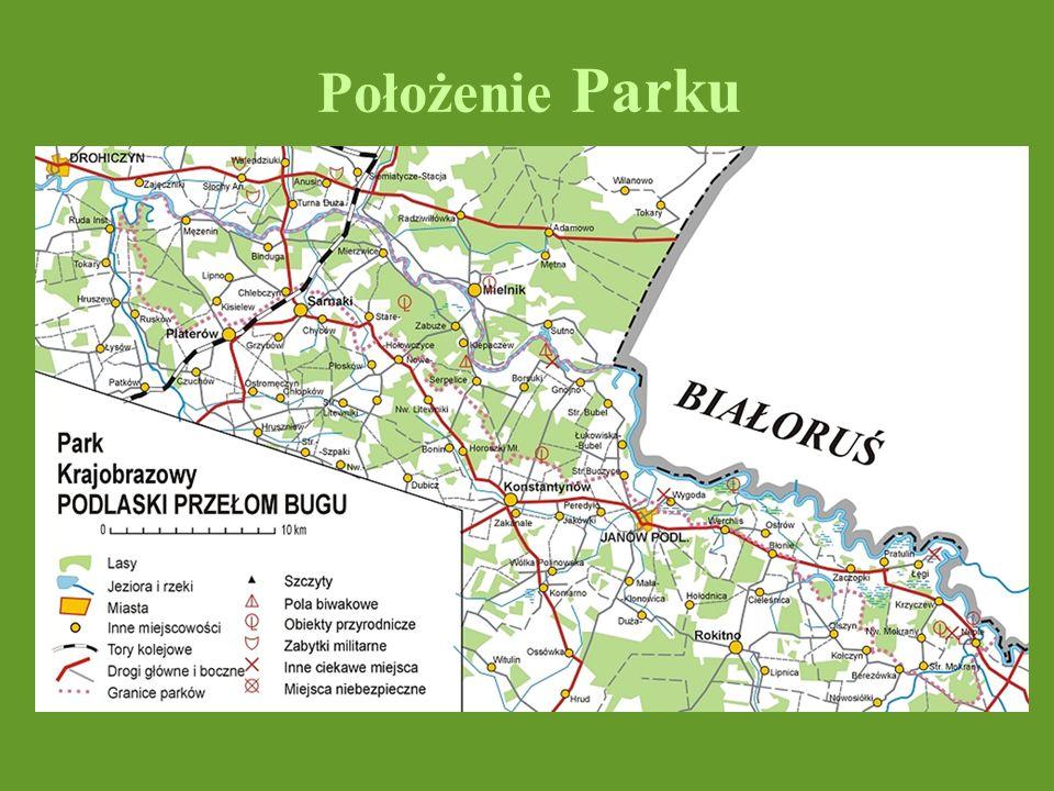 Rezerwaty przyrody (7) leśne: Łęg Dębowy Zabuże Stary Las faunistyczne: Kózki Czapli Stóg krajobrazowy Szwajcaria Podlaska florystyczny Mierzwice