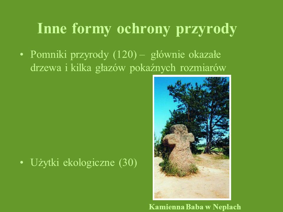 Inne formy ochrony przyrody Pomniki przyrody (120) – głównie okazałe drzewa i kilka głazów pokaźnych rozmiarów Użytki ekologiczne (30) Kamienna Baba w