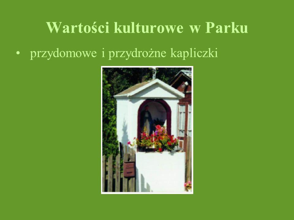 Wartości kulturowe w Parku przydomowe i przydrożne kapliczki