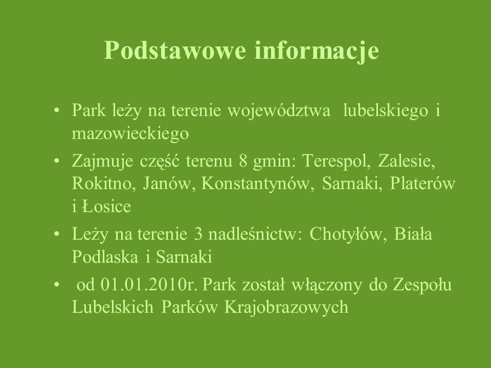 Podstawowe informacje Park leży na terenie województwa lubelskiego i mazowieckiego Zajmuje część terenu 8 gmin: Terespol, Zalesie, Rokitno, Janów, Kon