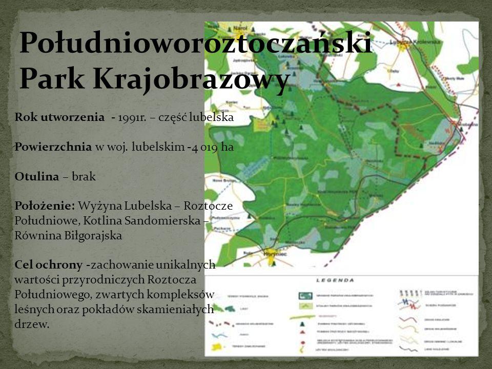 Południoworoztoczański Park Krajobrazowy Rok utworzenia - 1991r. – część lubelska Powierzchnia w woj. lubelskim -4 019 ha Otulina – brak Położenie: Wy