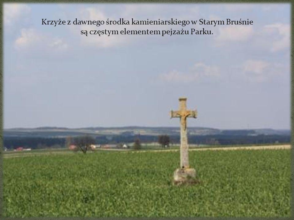 Krzyże z dawnego środka kamieniarskiego w Starym Bruśnie są częstym elementem pejzażu Parku.