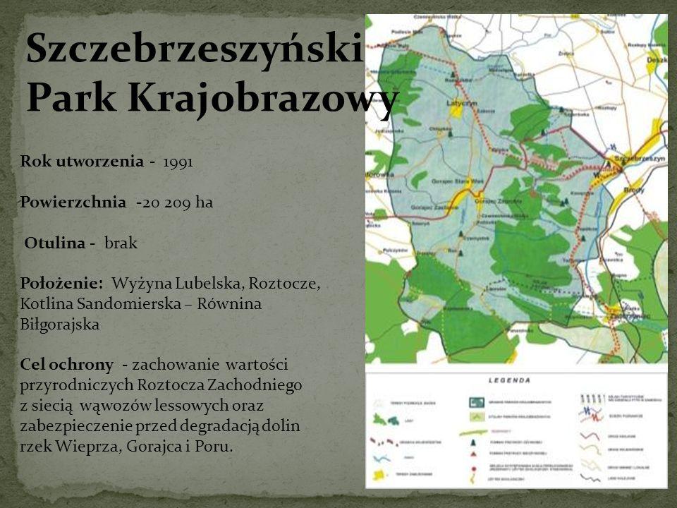 Szczebrzeszyński Park Krajobrazowy Rok utworzenia - 1991 Powierzchnia -20 209 ha Otulina - brak Położenie: Wyżyna Lubelska, Roztocze, Kotlina Sandomie