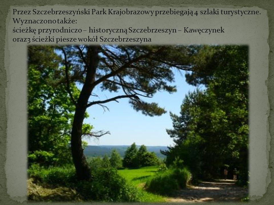 Przez Szczebrzeszyński Park Krajobrazowy przebiegają 4 szlaki turystyczne. Wyznaczono także: ścieżkę przyrodniczo – historyczną Szczebrzeszyn – Kawęcz