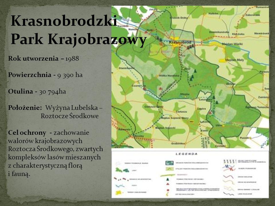 Krasnobrodzki Park Krajobrazowy Rok utworzenia – 1988 Powierzchnia - 9 390 ha Otulina - 30 794ha Położenie: Wyżyna Lubelska – Roztocze Środkowe Cel oc