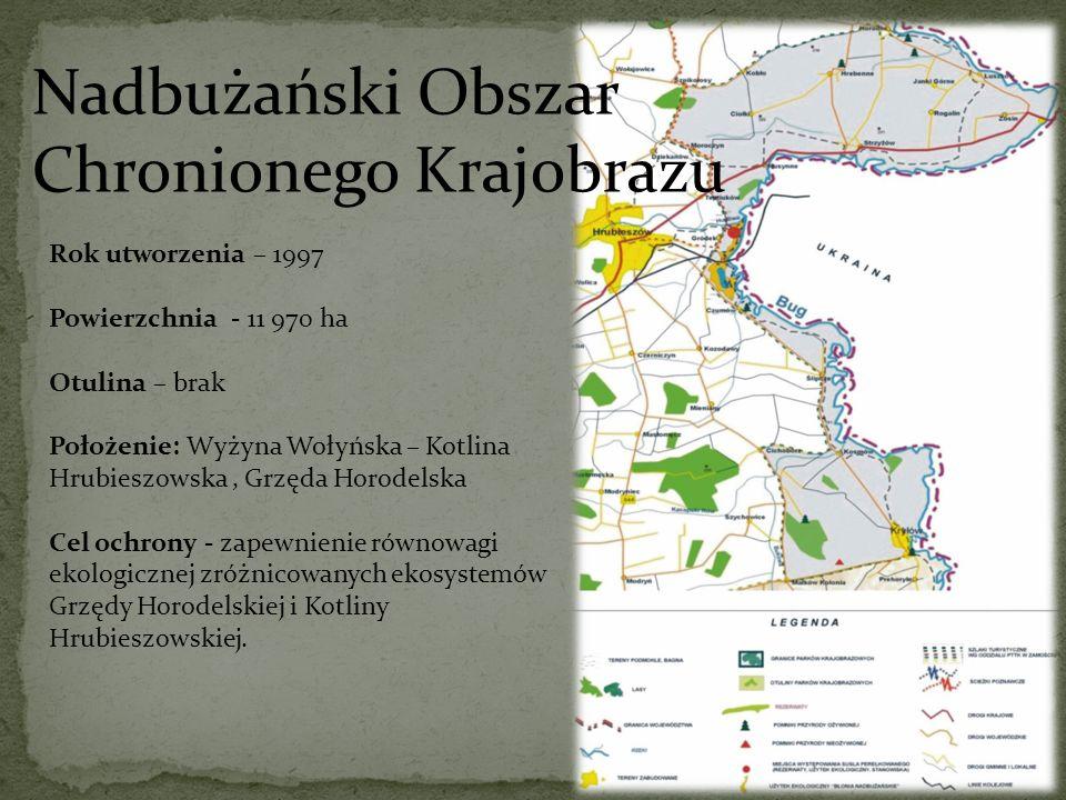 Nadbużański Obszar Chronionego Krajobrazu Rok utworzenia – 1997 Powierzchnia - 11 970 ha Otulina – brak Położenie: Wyżyna Wołyńska – Kotlina Hrubieszo