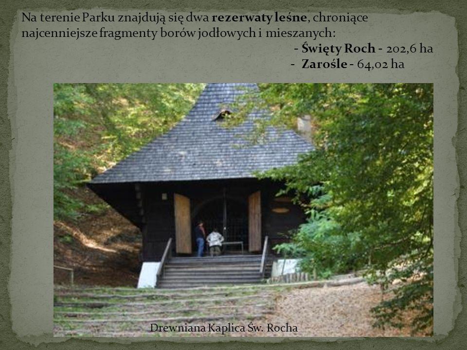 Na terenie Parku znajdują się dwa rezerwaty leśne, chroniące najcenniejsze fragmenty borów jodłowych i mieszanych: - Święty Roch - 202,6 ha - Zarośle