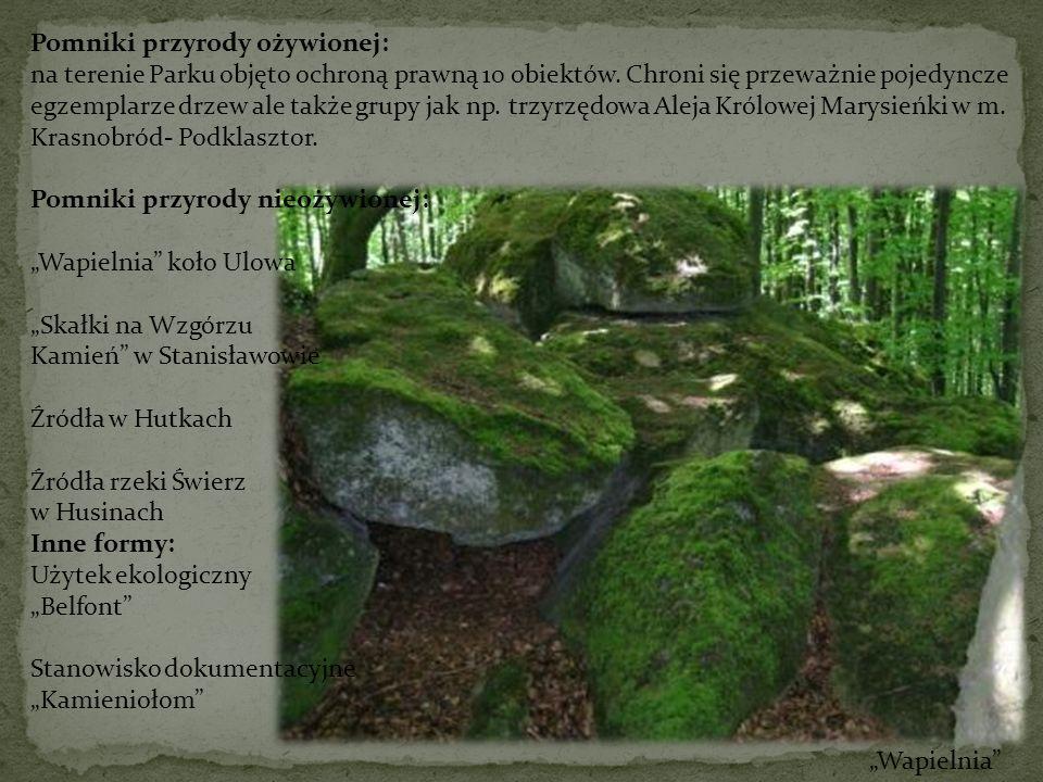 Pomniki przyrody ożywionej: na terenie Parku objęto ochroną prawną 10 obiektów. Chroni się przeważnie pojedyncze egzemplarze drzew ale także grupy jak