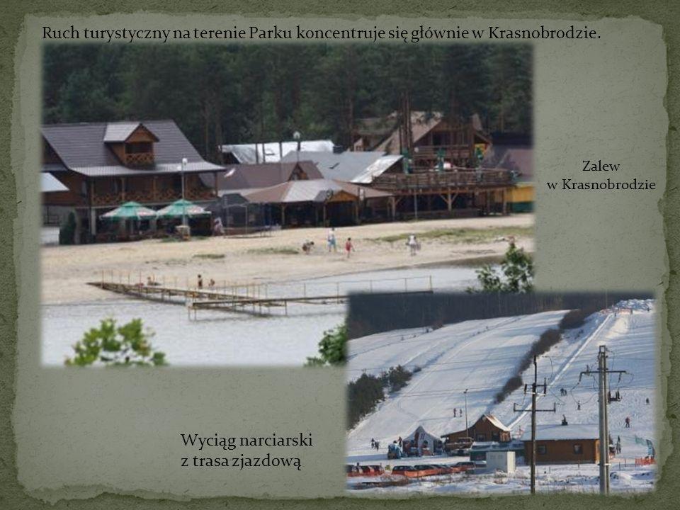 Ruch turystyczny na terenie Parku koncentruje się głównie w Krasnobrodzie. Zalew w Krasnobrodzie Wyciąg narciarski z trasa zjazdową