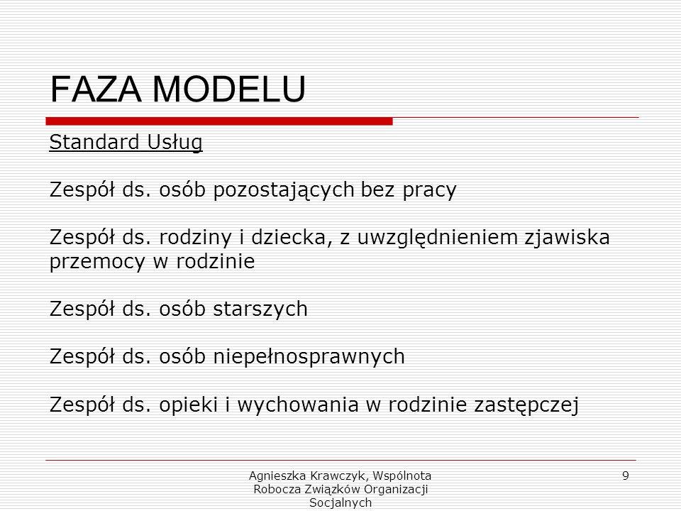 Agnieszka Krawczyk, Wspólnota Robocza Związków Organizacji Socjalnych 9 FAZA MODELU Standard Usług Zespół ds.