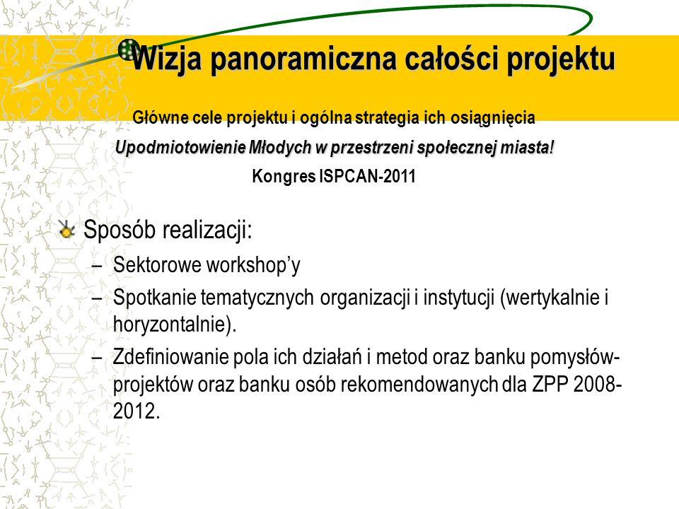 Wizja panoramiczna całości projektu Sposób realizacji: –Sektorowe workshopy –Spotkanie tematycznych organizacji i instytucji (wertykalnie i horyzontal