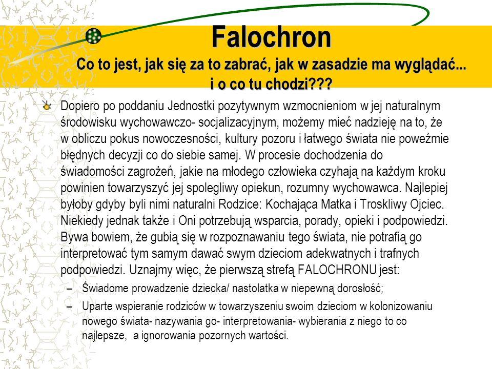 Falochron Co to jest, jak się za to zabrać, jak w zasadzie ma wyglądać... i o co tu chodzi??? Dopiero po poddaniu Jednostki pozytywnym wzmocnieniom w