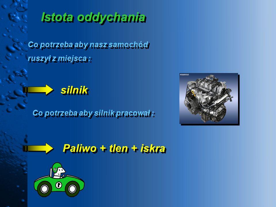 Istota oddychania Co potrzeba aby nasz samochód ruszył z miejsca : Co potrzeba aby nasz samochód ruszył z miejsca : silnik Co potrzeba aby silnik prac