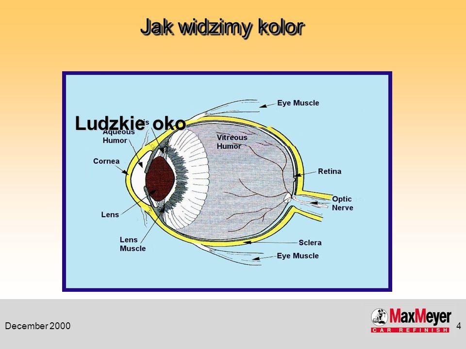 December 20004 Jak widzimy kolor Ludzkie oko
