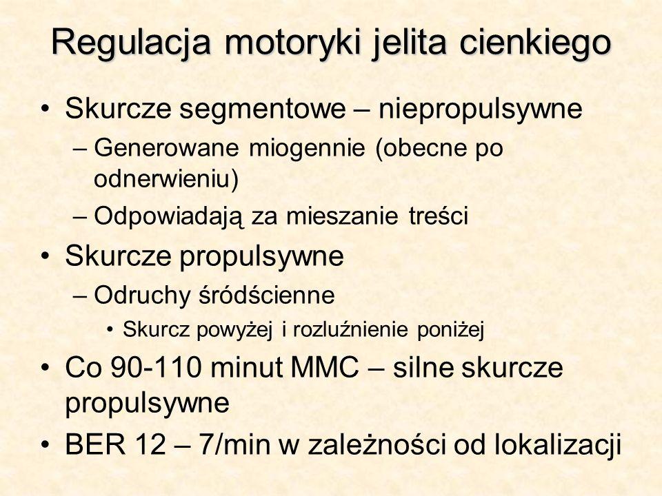 Regulacja motoryki jelita cienkiego Skurcze segmentowe – niepropulsywne –Generowane miogennie (obecne po odnerwieniu) –Odpowiadają za mieszanie treści