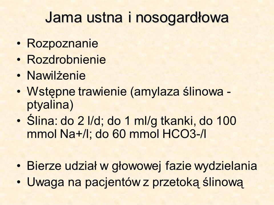 Jama ustna i nosogardłowa Rozpoznanie Rozdrobnienie Nawilżenie Wstępne trawienie (amylaza ślinowa - ptyalina) Ślina: do 2 l/d; do 1 ml/g tkanki, do 10